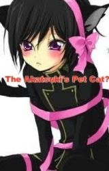 The Akatsuki's pet cat? ~a Naruto fanfiction~ (Continuation) by hatchi4233