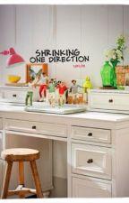 Shrinking One Direction by xXLoveLarryXx