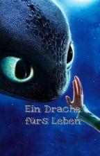 Ein Drache fürs Leben  by dragonlilalu