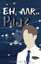 Eh, Mr. Pilot? by syaznixon