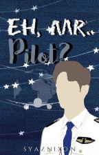 Eh, Mr. Pilot? by absyahnuradwa