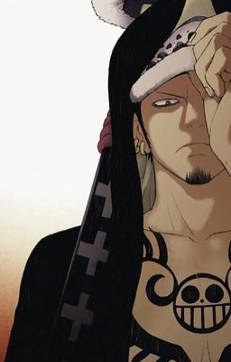 The Hawk and The Slave    Mihawk x Reader (EDITED/COMPLETED