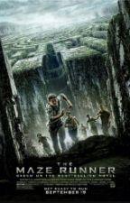 The maze runner (fan fiction) by romartye