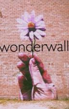 Wonderwall  // L.S. by louisdorable