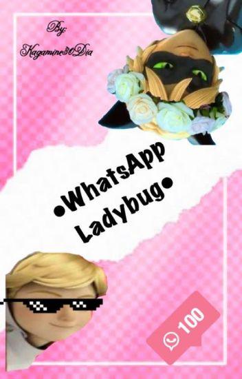 WHATSAPP LADYBUG