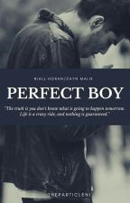 Perfect Boy✅ by TheParticleNi