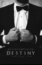 Destiny|#Lichteraward2017 by shxrlinx