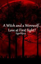 A Witch and a Werewolf... Love at First Sight? by tigerlily23
