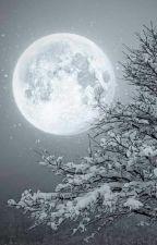 Der Weihnachtswolf by MartinaKnopp
