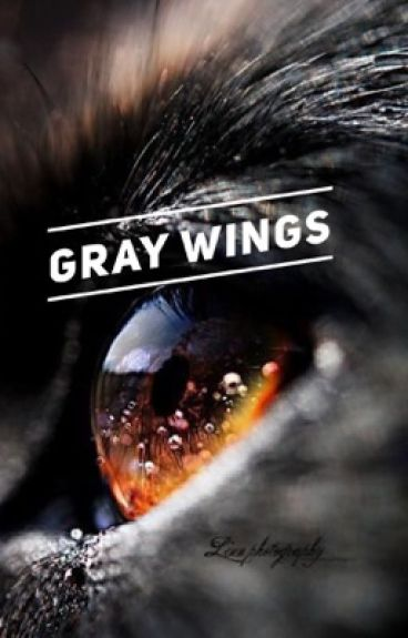 [VKook] Gray Wings
