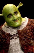 Shrek the Muscial Lyrics by dancerjonesss