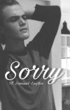 Sorry ft. Samuel Leijten {Voltooid} by imkecs