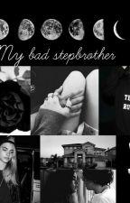 My bad stepbrother- Bosnian [ H.S ] by xStylesxax