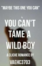 You Can't Tame A Wild Boy by nevaehc3703
