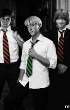 Birthday: Ron x Harry x Draco by Totally_Mudblood