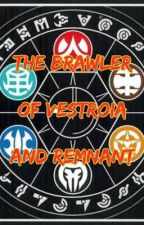 The Brawler Of Vestroia And Remnant by Braedey95