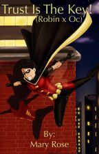 Trust is the key! (Robin x OC) young justice by kittenlover3