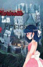 Marinette La Pricesa by Nicole_Segawa