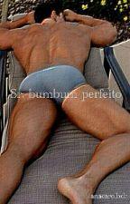 Sr. Bumbum Perfeito by anacarolbdr