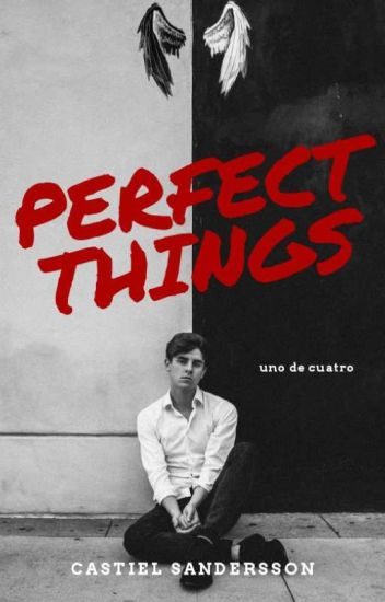 Perfect Things [Gay]