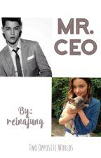 Mr. CEO by reinajung