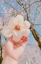 Người yêu của tôi là ca sĩ by ChanbaekMc