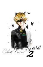 Chat Noir? Adrien Agreste? 2 (Marichat) by DilrubaKidrauhl