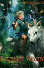 Белый Волк by Akinessa188