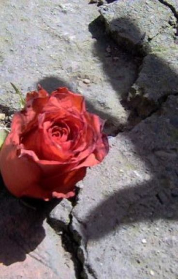 """ The Rose Who Grew On Concrete "" Imitation. by Myhubbyspongebobx3"