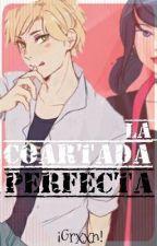 [ML] La Coartada Perfecta【Gabrinette & Adrienette】© by fxnsfree