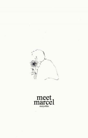 Meet Marcel