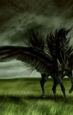 Das Pferd der Gestaltenwandler.-Blacky Teil 1 by SkelletonHeart