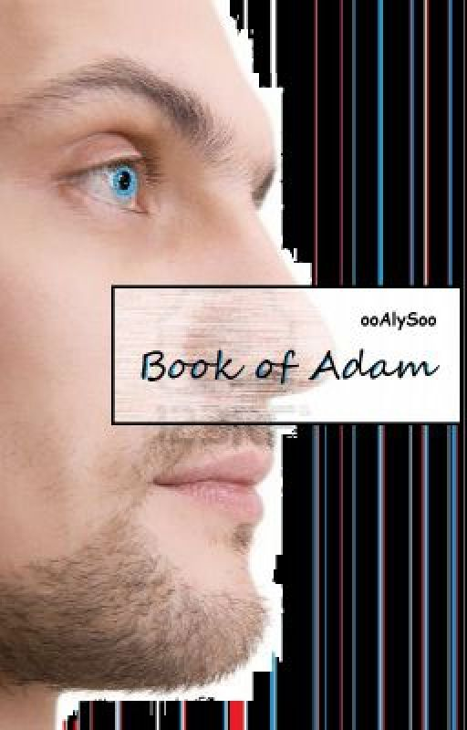 Book of Adam - (Second Book in Broken Angel Series) by ooAlySoo