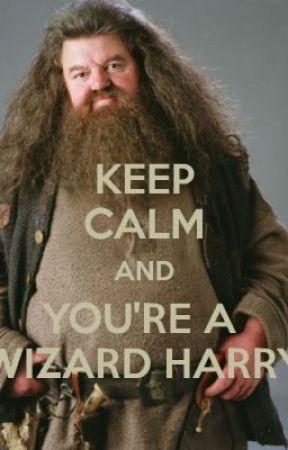 yer a wizard harry wattpad