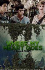 Where My Heart Goes (Minho x Reader x Newt x Thomas) |ON HOLD| by -devilishlove