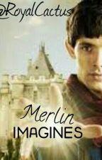 Merlin Imagines ♥ by RoyalCactus