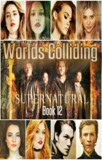 Worlds Colliding (Supernatural) Book Twelve by heartofice97