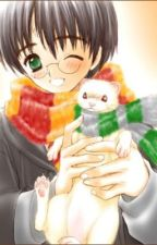 Harry's Pet ( a Harry potter fanfic) by PIETRO-MAXIMOFF123
