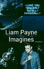 Liam Payne Imagines by Niall_LukeFanatic