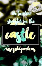 Castle|The Fosters Fanfic| by rosegoldgardens