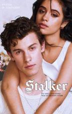 stalker ❀ cml og shwn by itsamendesgf