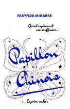 PAPILLON CHINOIS by saoria26