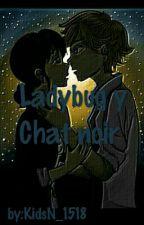 Ladybug Y Chat Noir  by KidsN_1518