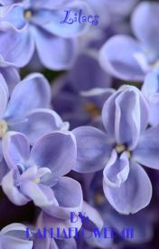Lilacs by DahliaFlower411