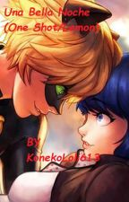 Una bella noche (One Shot)(Lemon)(Marichat) by KonekoLoli613
