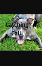 Catching Cali by kensi_lauer