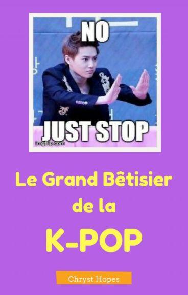 Le Grand Bêtisier de la K-Pop [Réactions] by ChrystHopes