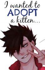 I wanted to adopt a kitten... |Kuroo T.| by SukimaYu