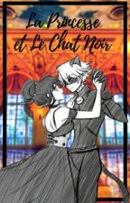La Princesse Et Le Chat Noir (la princesa y el gato negro) [Marichat] by TiaYuli-Chan