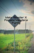 Male Reader X  Female Yandere Furry by DragonFag
